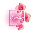 spring pink orchid white background image vector image vector image