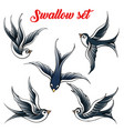swallow set vector image vector image