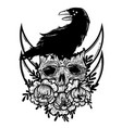 with a human skull raven and vector image vector image