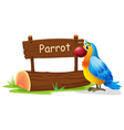 A colorful bird near a signboard vector image vector image