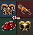 different ram heads cartoon style vector image vector image