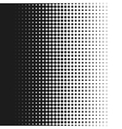dotted background white vector image