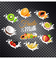 fruits and milk set vector image