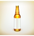 Glass beer brown bottle and label Product packing vector image vector image