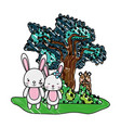grated couple rabbit animal and bear next to tree vector image vector image