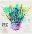 hand drawing cactus on watercolor background vector image