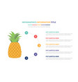 pineapple fruit infographic template concept with vector image vector image