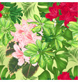 seamless texture tropical flowers red and pink vector image vector image