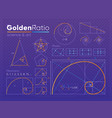set of golden ratio element vector image