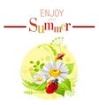 Summer icon with nature elements - daisy flower vector image vector image