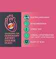 diagnosing coronary artery disease cad icon vector image vector image