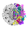 hand drawn brain left and right semispheres vector image