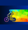 male colorful silhouette on bicycle vector image vector image