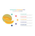 melon yellow infographic template concept with vector image vector image