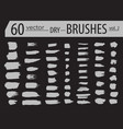 brushes dry ink paint grunge hand drawn vector image
