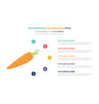 carrot orange infographic template concept with vector image vector image