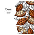 cocoa frame superfood drawing template vector image vector image