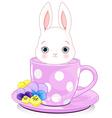Cup Bunny vector image vector image