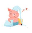 cute pig in hat sleeping funny cartoon animal vector image vector image
