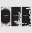 feathers banners template realistic white swan vector image vector image