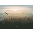 mountain forest in fog and sunrise vector image vector image