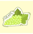 Bunche of grape badge vector image