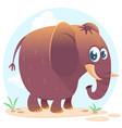cartoon cute elephant vector image vector image