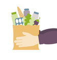 delivery food concept hands hold food bag vector image vector image
