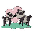 pandas couple over grass in watercolor silhouette vector image vector image
