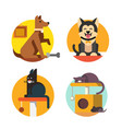 cat and dog flat vector image