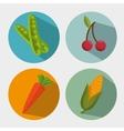 healthy vegetables and fruit design vector image
