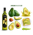 avocado realistic set vector image