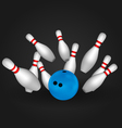 Bowling pins and bowl vector image vector image