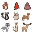 cute forest animals and birds set chipmunk vector image vector image