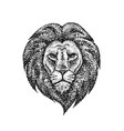 dotwork lion face vector image vector image