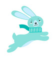 fluffy rabbit with long ears in warm scarf jumps vector image