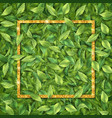 frame leaf background vector image vector image