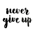 Never give up brush lettering vector image vector image