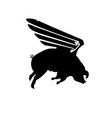 silhouette funny piggy with wings flying pig vector image vector image