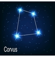 The constellation Corvus star in the night sky vector image vector image