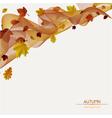 autumn ribbon vector image