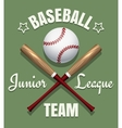 Baseball game team emblem vector image