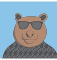 bear with glasses vector image vector image