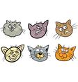 Cartoon funny cats heads set vector image vector image