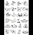 Collection flourishes patterns for design vector image vector image
