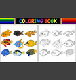 coloring book various fishes vector image vector image