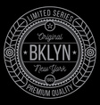 New York Brooklyn typography vector image