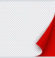 red banner template with curled corner square vector image vector image