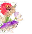 Floral abstract composition vector image