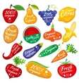 Fruit and vegetables color silhouettes logo for vector image vector image